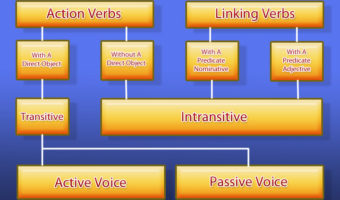 How To Identify Verbs
